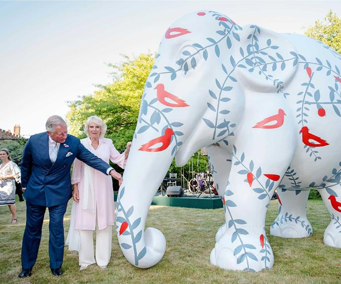 The Duchess is delighted to be involved with her late brother's Elephant Family charity.