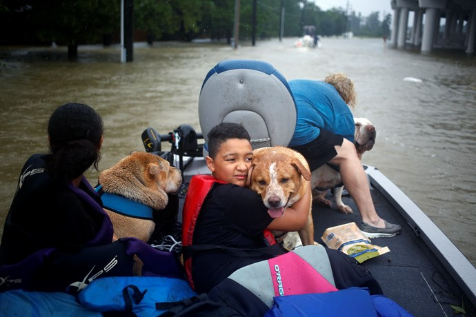 A young resident of Spring, Texas hugs his grandmother's dog after the family was rescued.