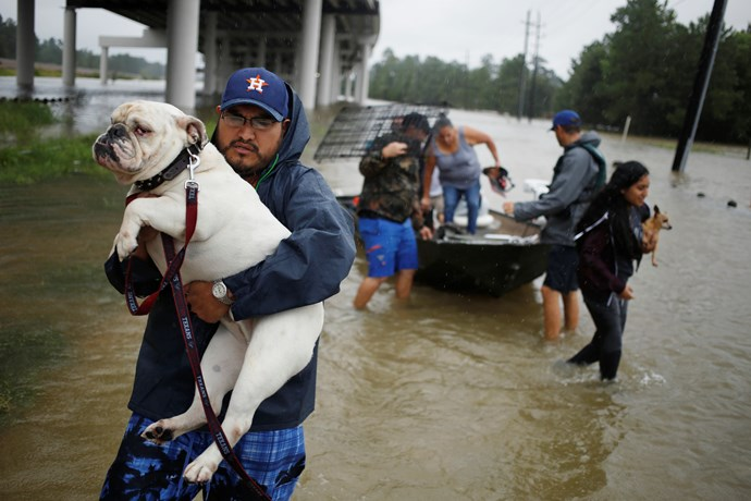 After evacuating their home, a man and his dog make their way to safety.