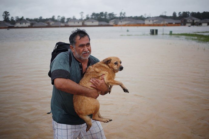 A man and his dog escape rising floodwaters in Spring, Texas.