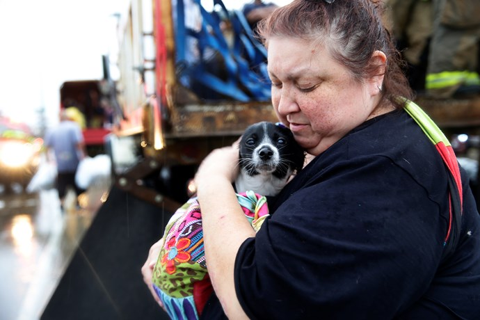 Elma Moreno comforts her dog Otis in Houston.