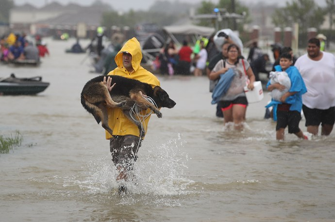 A man carries his dog through Houston.