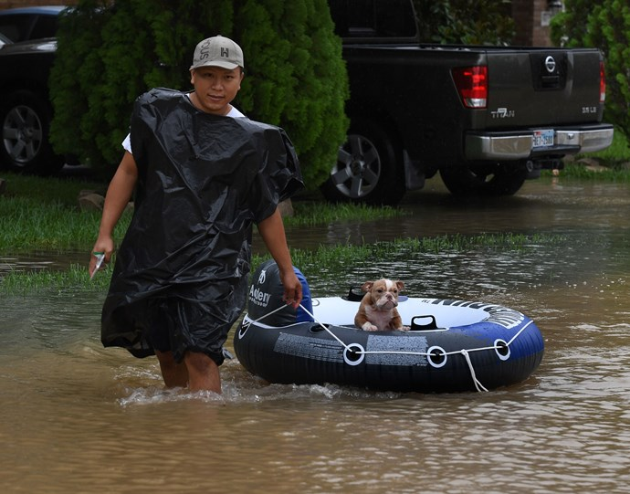 Clodine resident John Tuan west back to rescue his dog from his flooded house.