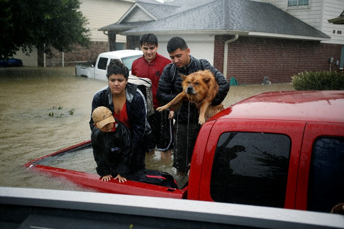 A family and their dog wait to be rescued from the back of their truck.