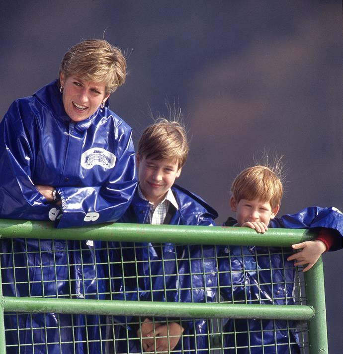 Diana and her boys are pictured visiting the Niagara Falls.