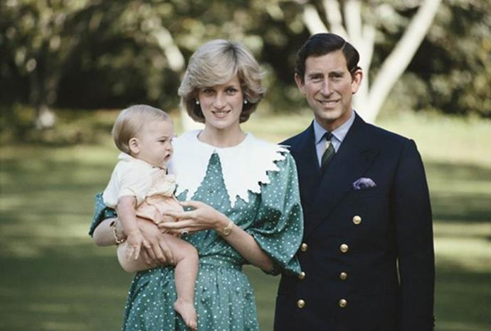 The royal family pose for an official portrait, with wee William cradled in his mother's arms.