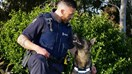 Hero cop Regan Mauheni and his adorable pet project