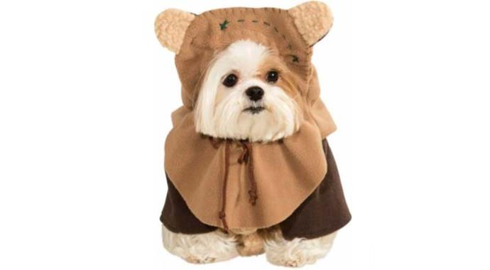 **Ewok** Whether you're a Star Wars fan or not, you must admit this is too cute.