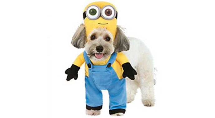 **Minions** If your kids are obsessed with these things anyway, why not give in?