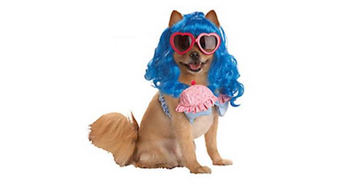 **Pup-A-Razzi Cupcake Girl** We aren't sure what is going on here, but we like it!