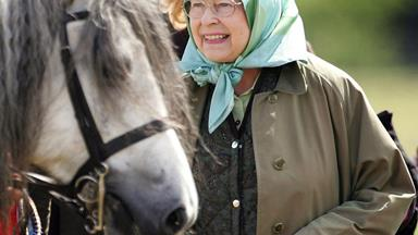 Queen Elizabeth wins on the horses