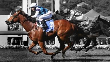 What it's like to be a woman jockey in NZ