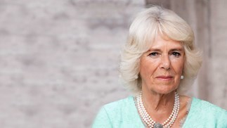 Why Camilla may never be queen