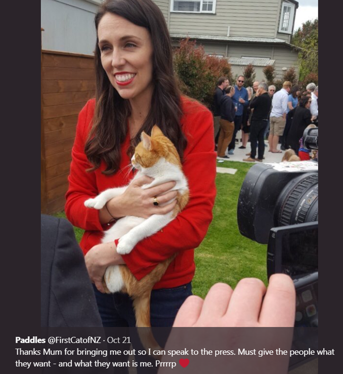 Paddles the PM's cat has died