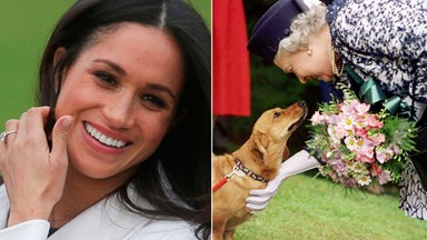 When Meghan Markle met The Queen's corgis