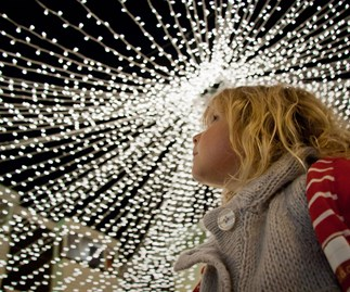 The best Christmas events in Christchurch