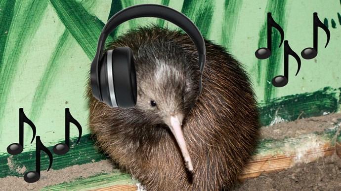 New Zealand's 2017 music streaming habits revealed