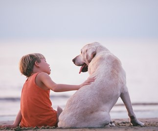 9 things that all kids need to know about dogs