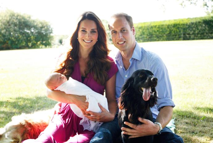 Kate, William, George and dogs Lupo and Tilly in 2013