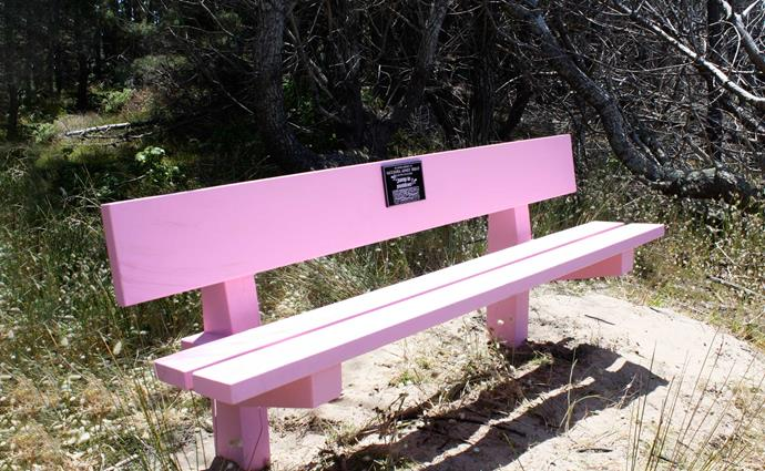 A memorial seat looks out over Opoutere Beach where Natasha would enjoy hours in the surf at the family bach.