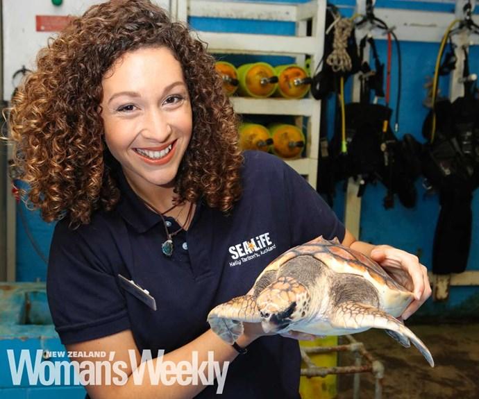The Kelly Tarlton's aquarist saving turtles one plastic bag at a time