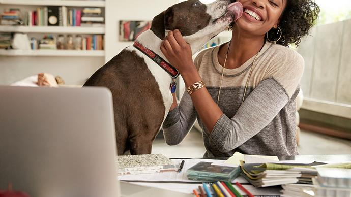 7 reasons why having a pet is great for your health