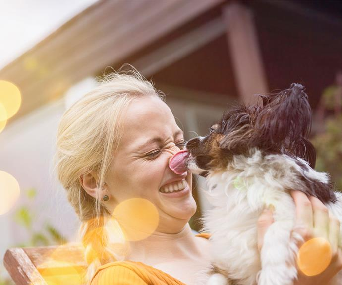 "We're stating the obvious here, but our pets make us happy - no, really. When we play with our pet we release oxytocin, which is informally known as the 'love hormone'. Oxytocin also plays a role in bonding and helps to reduce depressive feelings. But not only does playing with our pets make us happy, *[Medical Daily](https://www.medicaldaily.com/top-10-reasons-pets-are-good-your-health-245712|target=""_blank"")* reports that pet ownership can boost self-esteem and self-worth."