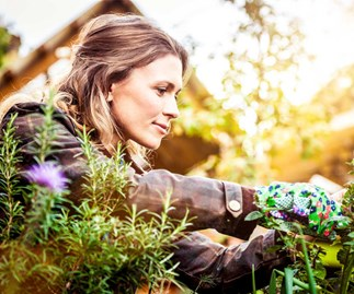 How gardening can change your mind and body for the better