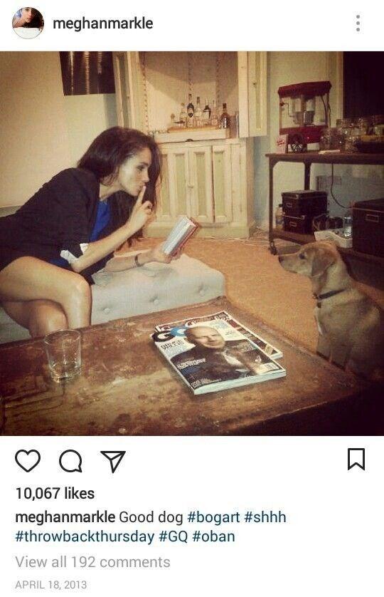 Meghan adored her rescue pup Bogart.