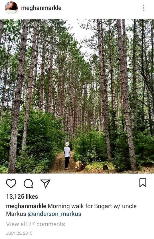 Meghan is always active and often mentioned how much she loved walking her dogs.
