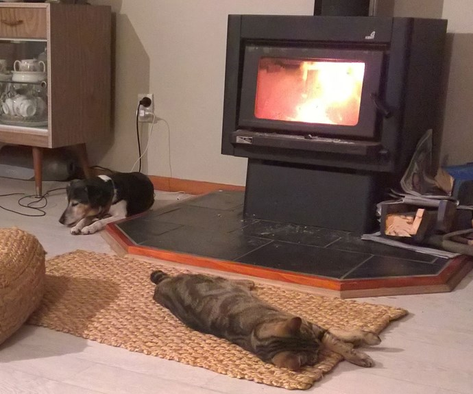 A classic fire-hog scene in many Kiwi homes during winter. Note, the cat got the best spot.