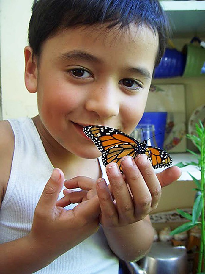 Like the butterflies she loved as a boy, Awa has gone through a metamorphosis.