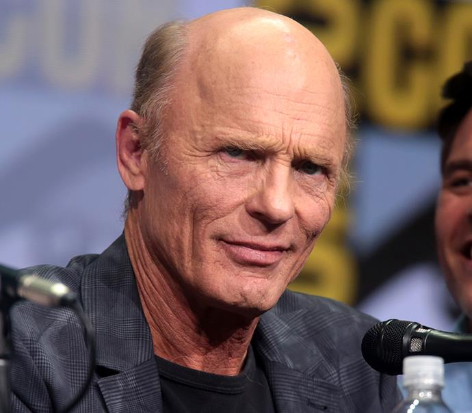 **Ed Harris**   Another recent casting announcement involves *Westworld* actor Ed Harris but much like Jon Hamm's character, no further information has been released.