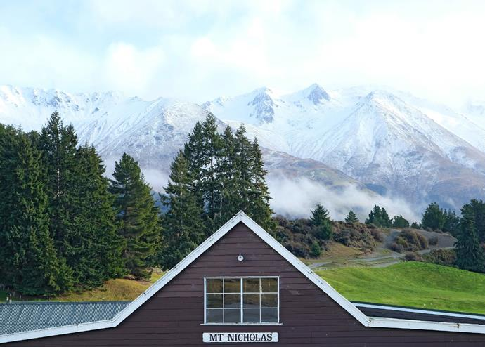 Mt Nicholas Farm.