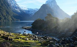 Why a digital detox and wellness weekend in Fiordland is exactly what you need