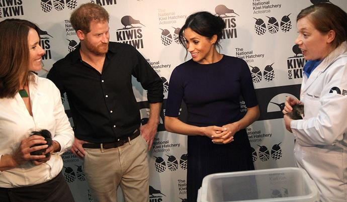 Harry and Meghan narrowly missed out on seeing a kiwi hatch.