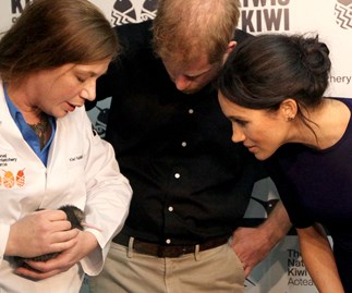 Prince Harry and Duchess Meghan narrowly miss out seeing a kiwi chick hatch in Rotorua