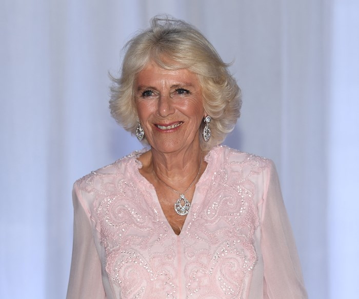 Camilla, Duchess of Cornwall, shows off her dance moves in West Africa - and she's not bad!