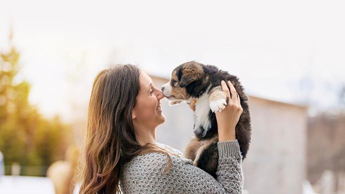 The pros and cons of adopting a rescue animal