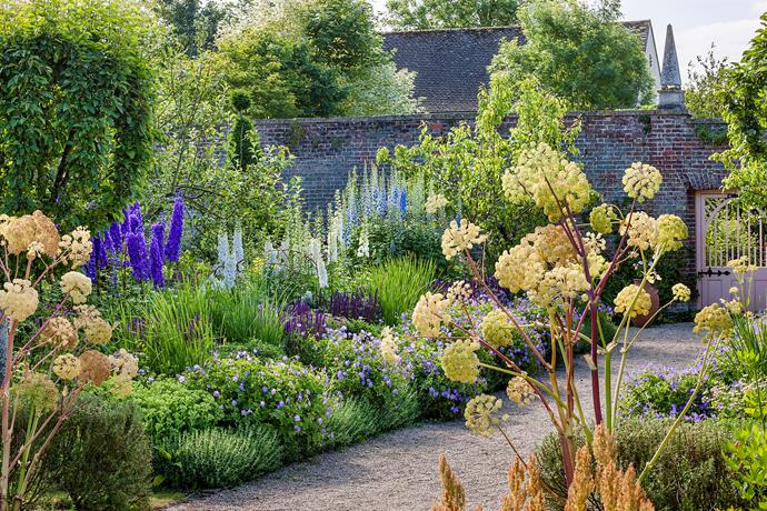 The borders in the Kitchen Garden are filled with Prince Charles' favourite delphiniums
