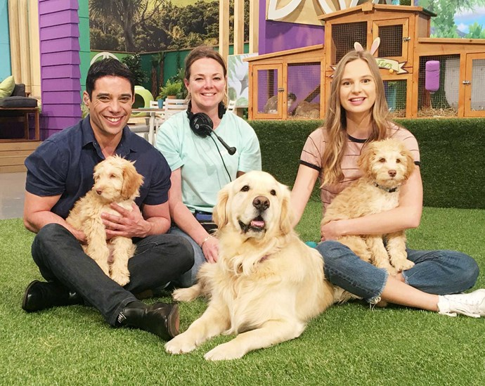 With Fanimals vet Stacey Tremain, host Jess Quilter and star pooch Molson.