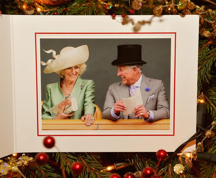 Eight years of marriage under their belts and Charles and Camilla looked more in love than ever in their 2013 Christmas card photo.