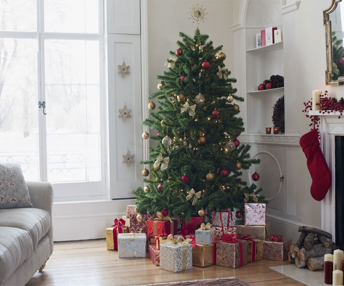 When is the proper time to take down your Christmas tree?