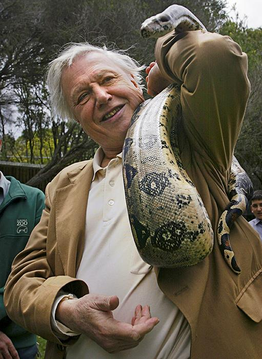 Sir David meets the locals at the Taronga Zoo in 2003