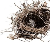 Empty nest: One mum's tips for how to adjust when your children fly the coop