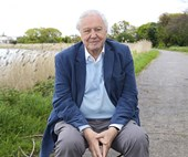 Sir David Attenborough the legend: how he's still producing groundbreaking TV series at age 92
