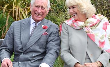Prince Charles and Duchess Camilla share a beautiful new portrait to celebrate their anniversary