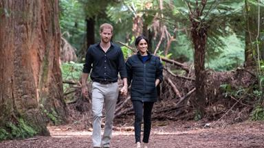 Prince Harry's stunning wildlife photography is revealed in celebration of Earth Day
