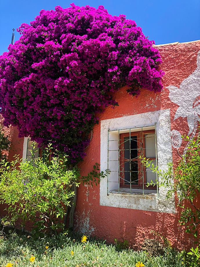 You haven't seen quaint till you've visited Portugal, with a sigh-worthy sight at every turn. *Image: Todd Emerson*