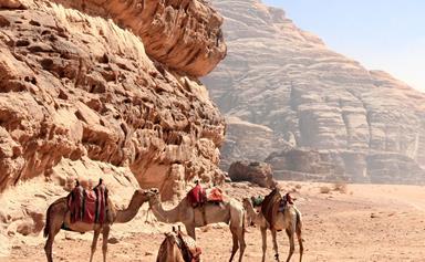 The intrepid Kiwi couple in their sixties who trekked 700km across Jordan